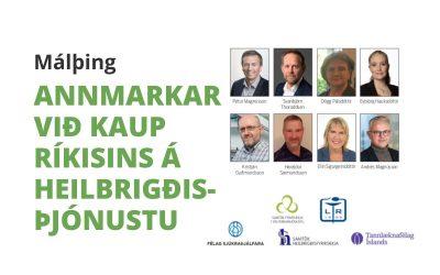 Annmarkar við kaup ríkisins á heilbrigðisþjónustu